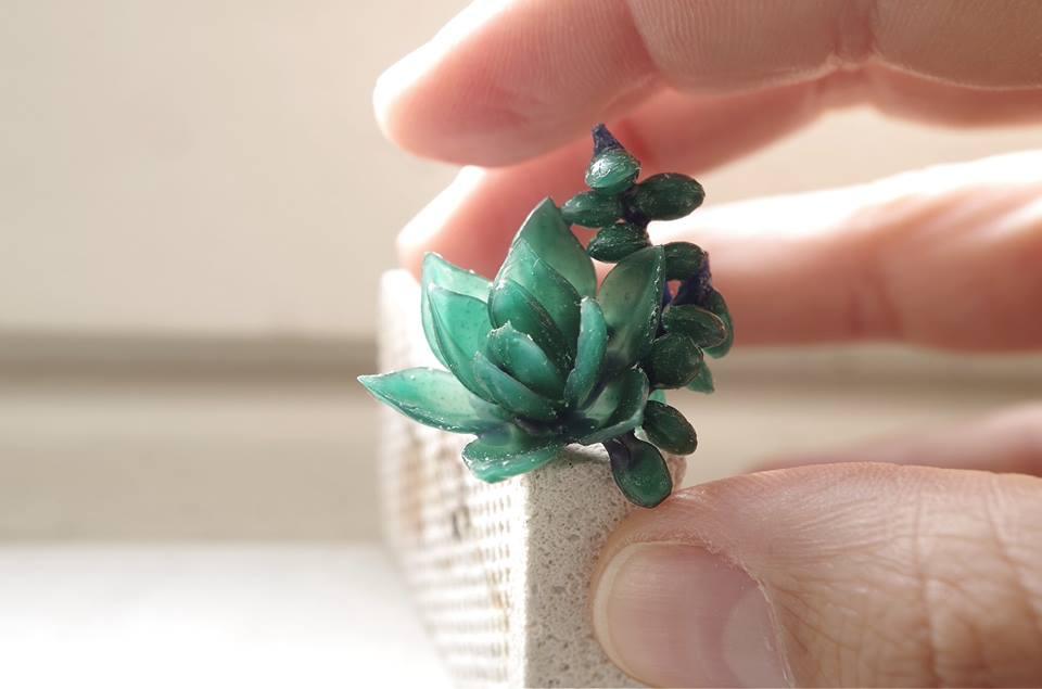 Succulent_wax.jpg