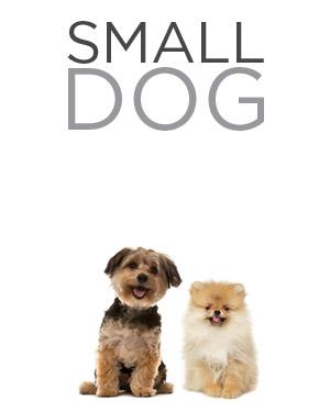 small dog home.jpg
