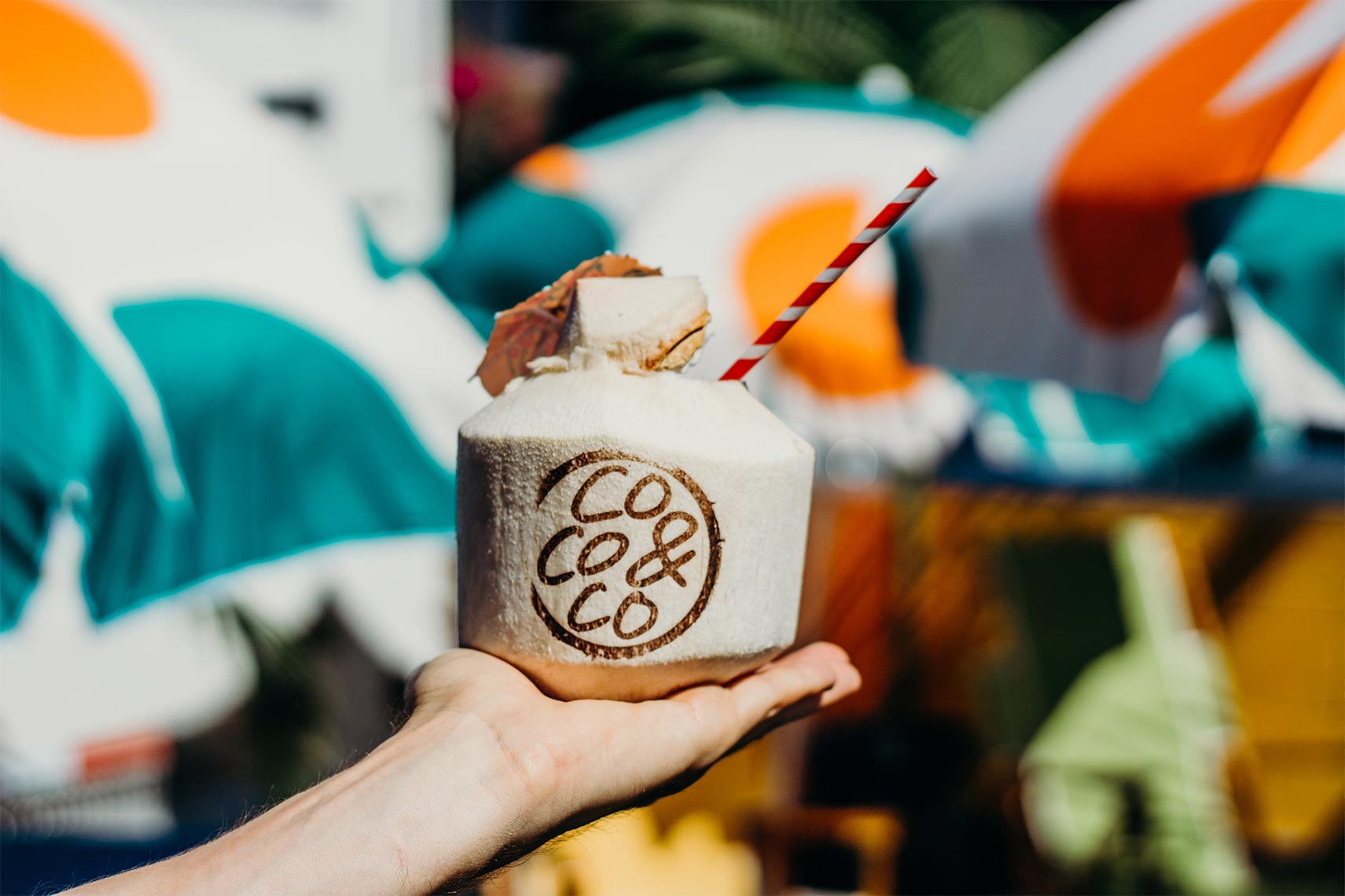 coco & co fresh coconuts creation by Meraki Narrative: A Branding, Design, and Creative Agency