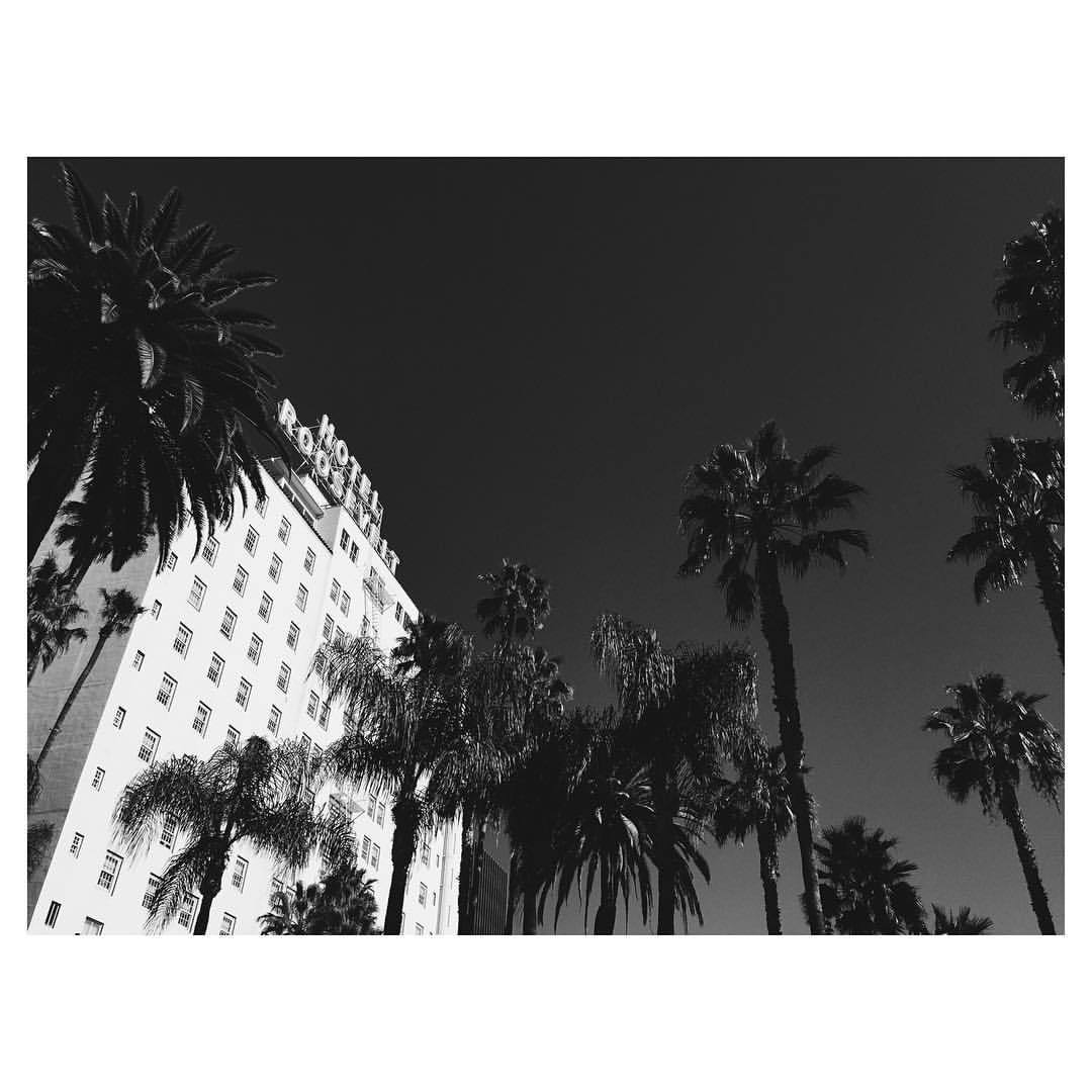 The one and only #roosevelthotel #afifest2015 #la #losangeles #theurbanexpat #bestofvsco #instabest #neveraboringmoment #passionpassport #mytinyatlas #TellOn #vscolosangeles #instalosangeles #vscola #instala #blackandwhite  (at Hollywood Roosevelt Hotel)
