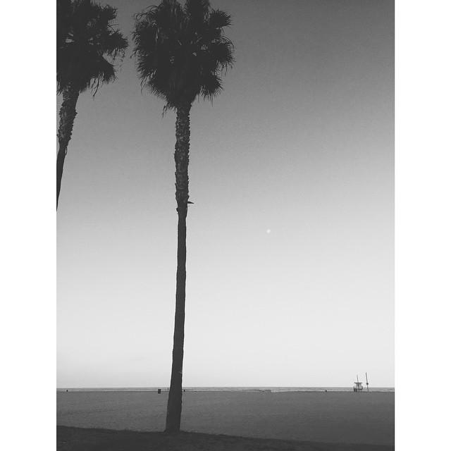 Early morning beach time #Venicebeach #california #losangeles #beach #beachlife #sunrise #moon #vsco #vscocam #vscobest #insta #instagood #instabest #instalosangeles #TellOn
