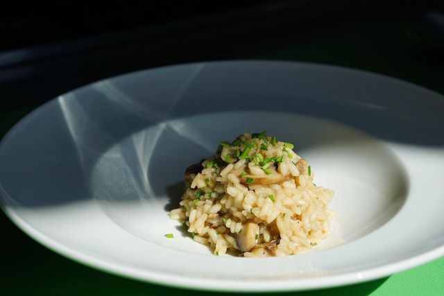 Try your best not to drool all over your phone, a classic mushroom risotto with a touch of fresh chives.  #pueblo25  #honestfood #organic #madewithlove  #cookinglesson