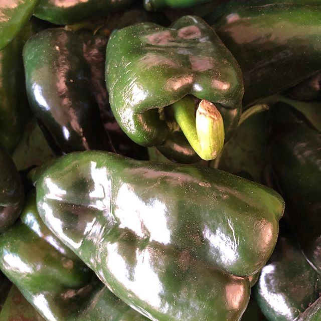 chili's local market , #localfood #localingredients #mexicofood #honestfood @pueblo25careyes #careyes #chiles