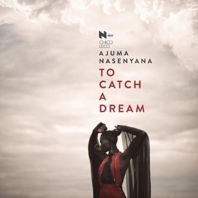 To Catch a Dream .jpeg