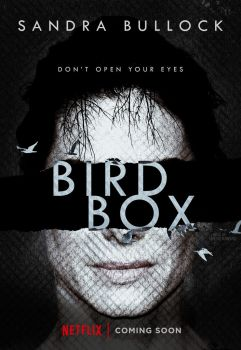 bird_box__2018____poster_by_netoribeiro89-dbr44bz.jpg
