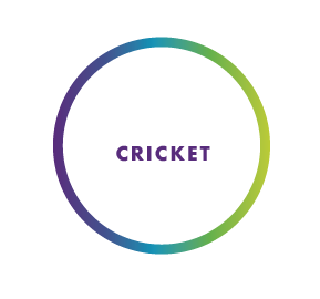 CRICKET .png