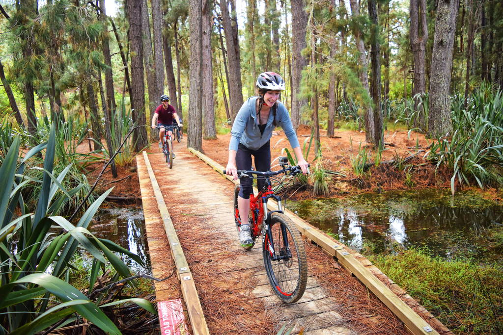Waitangi-Mountain-Bike-Park-Bay-of-Islands_optimized.jpg