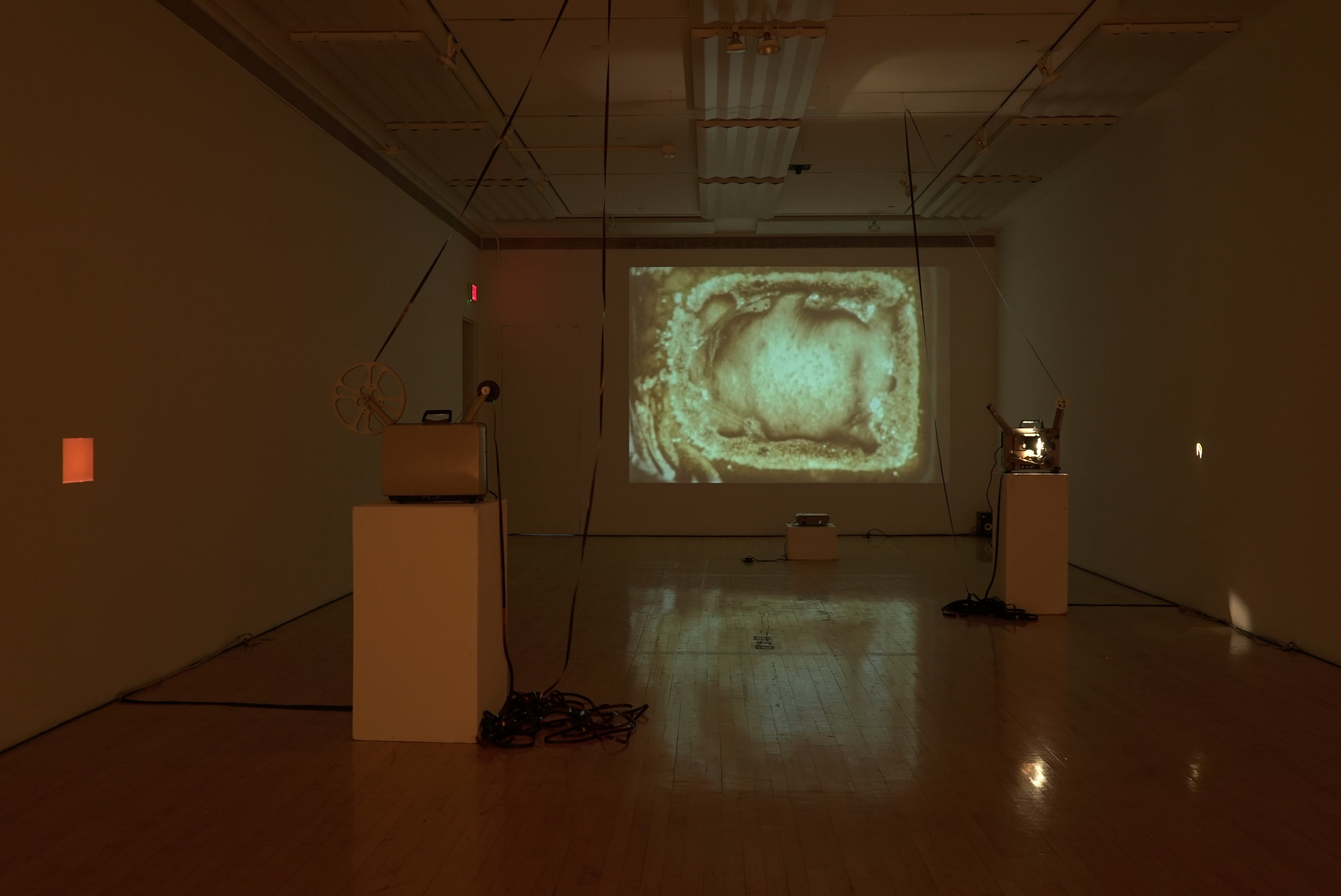 Sept 2017. 16mm film and digital projection. Olive Tjaden Gallery. Installation view, west wall.