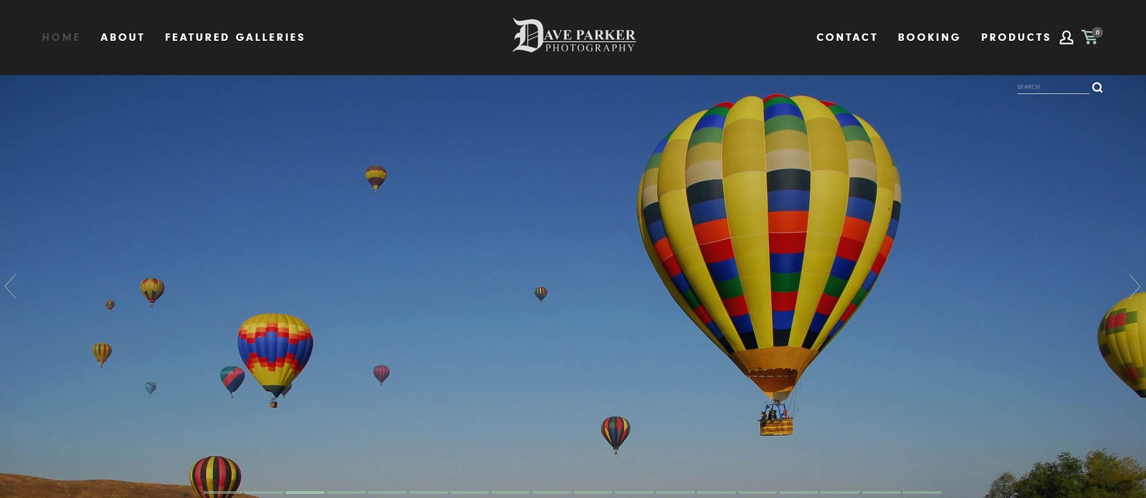 The main page of the client's website.