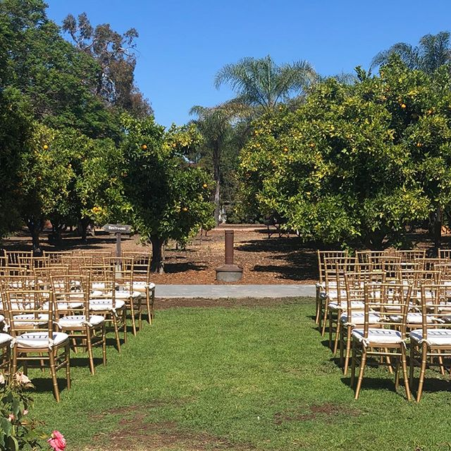 Hayley & Christopher 7/20/19 ❣️First time having ceremony by Orange Grove.....turned out amazing 🍊Two kings tables to fit 100 guests....just another gorgeous day for a wedding🥂 #countrygardencaterers  #heritagemuseum  #cateringservice  #partyrentals  #fullservicecatering  #barservice  #hmocweddings  #hmoc  #rentals  #weddingrentals