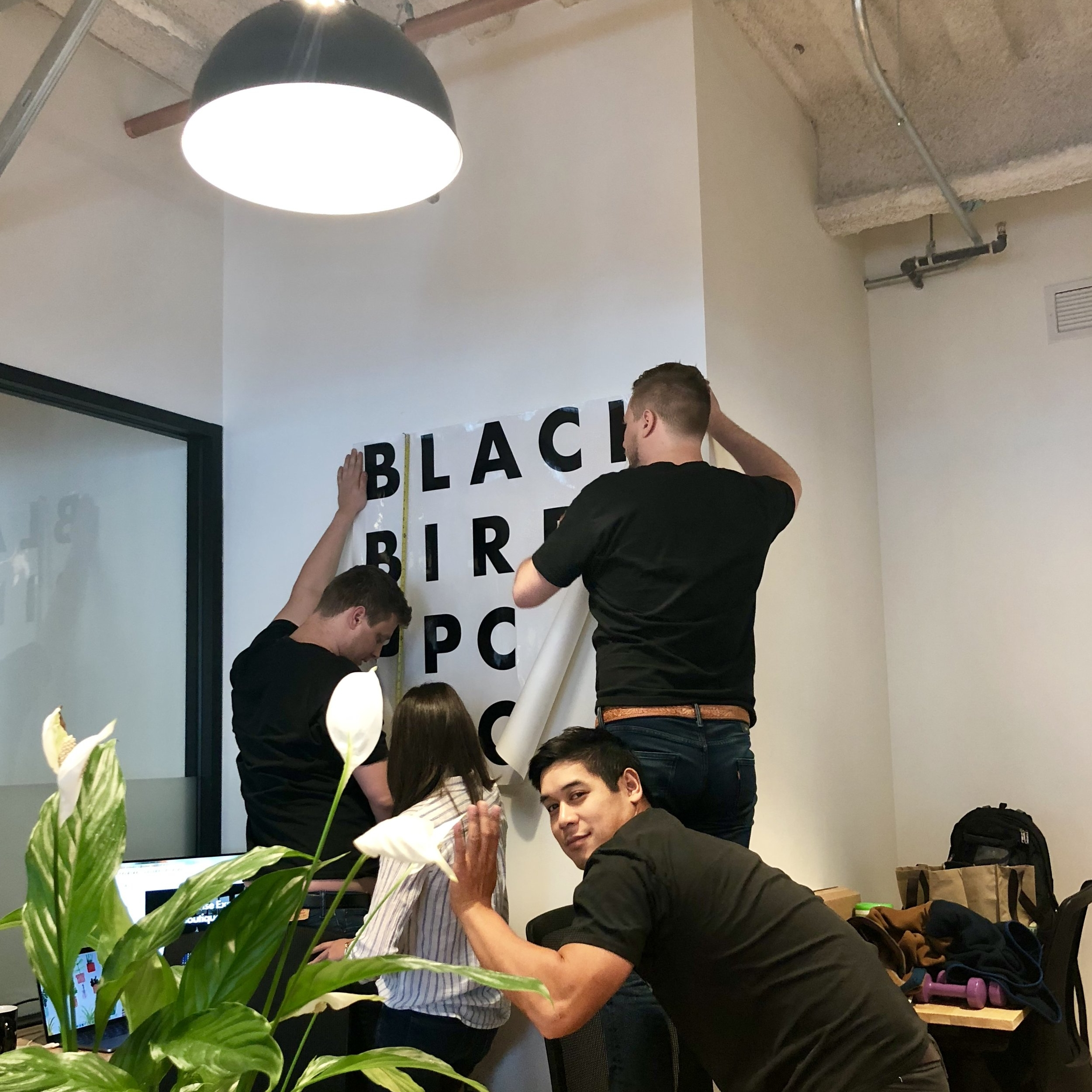 Blackbird new office