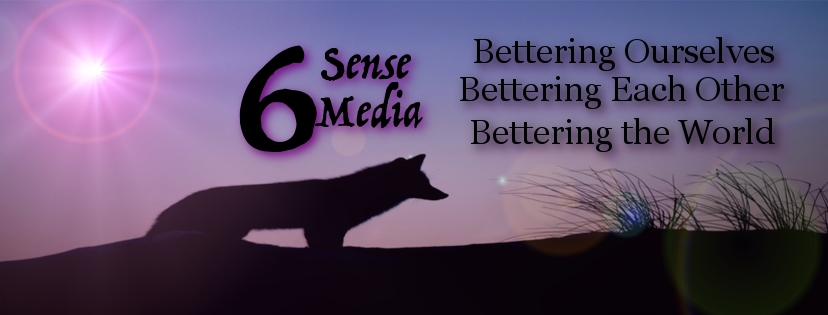 6SM FB Banner Fox.jpg