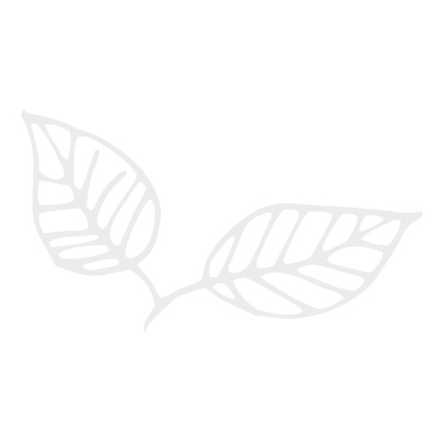 Favicon---leaf.png