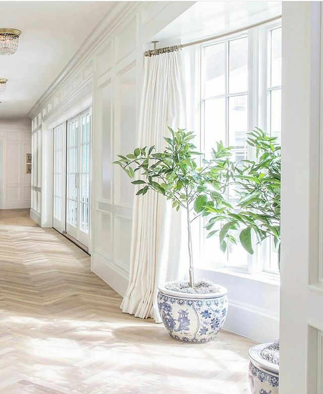 Some more eye candy for you.  There is so much to love, where do I start? The oak herringbone? The curved window with sheer curtains and the brass railing? Or maybe those perfect blue and white pots... 🤔 Just the size of that hallway with the light shining in and I'm in love.  Thanks @riverwoodbuildingcompany for posting this beauty by the talented @the_fox_group_ 😍  #InteriorInspo  #OakFlooring #HerringboneFlooring #Hallways