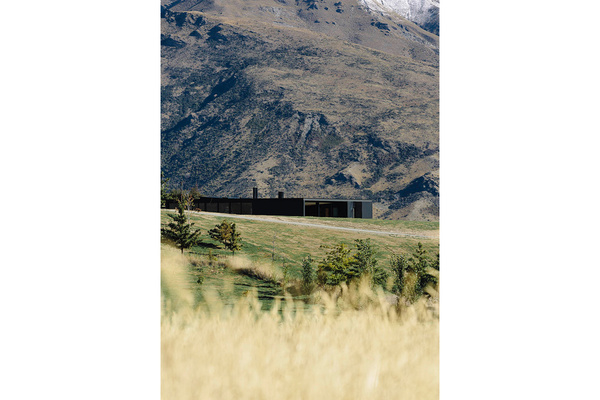 Newspred_Landscape_SizingGuide_0001_Alpine-Terrace-16.jpg