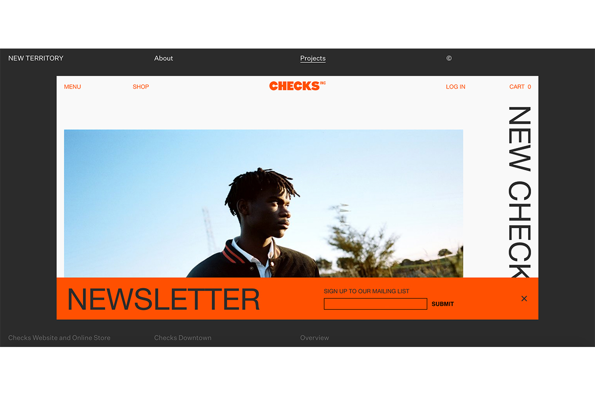 New Territory's design of  Checks Downtown's  website.