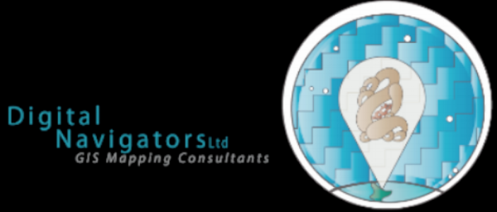 digital navigators logo.png