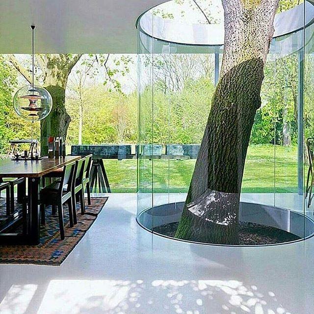 Boxy #Küche Pavilion von Maarten Van Severen  #archi #arch #arhitecture #architecture #deutschland #Germany #düsseldorf #berlin #hamburg #dortmund #essen #frankfurt #dresden #leipzig #stuttgart #bremen #münchen #Mönchengladbach #cologne