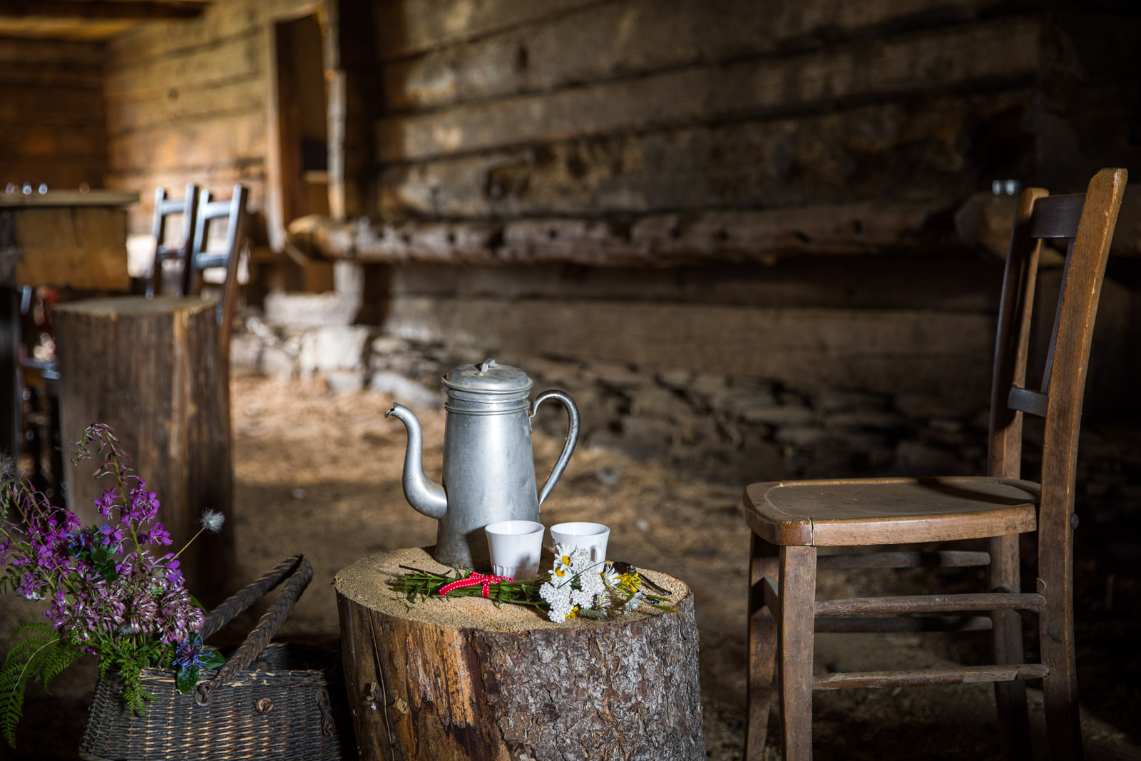 Chalet Alpage Summer - Reportage Photo - Victor Perez - Atelier VE-3.jpg