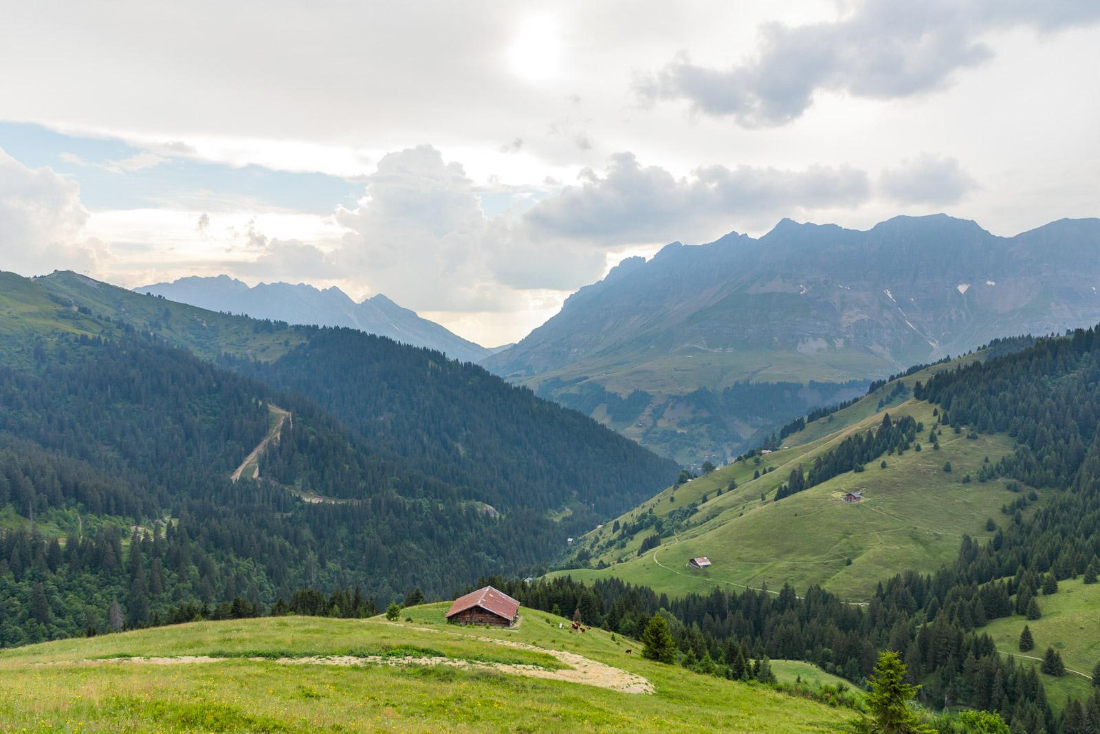 Chalet Alpage Summer - Reportage Photo - Victor Perez - Atelier VE-7.jpg