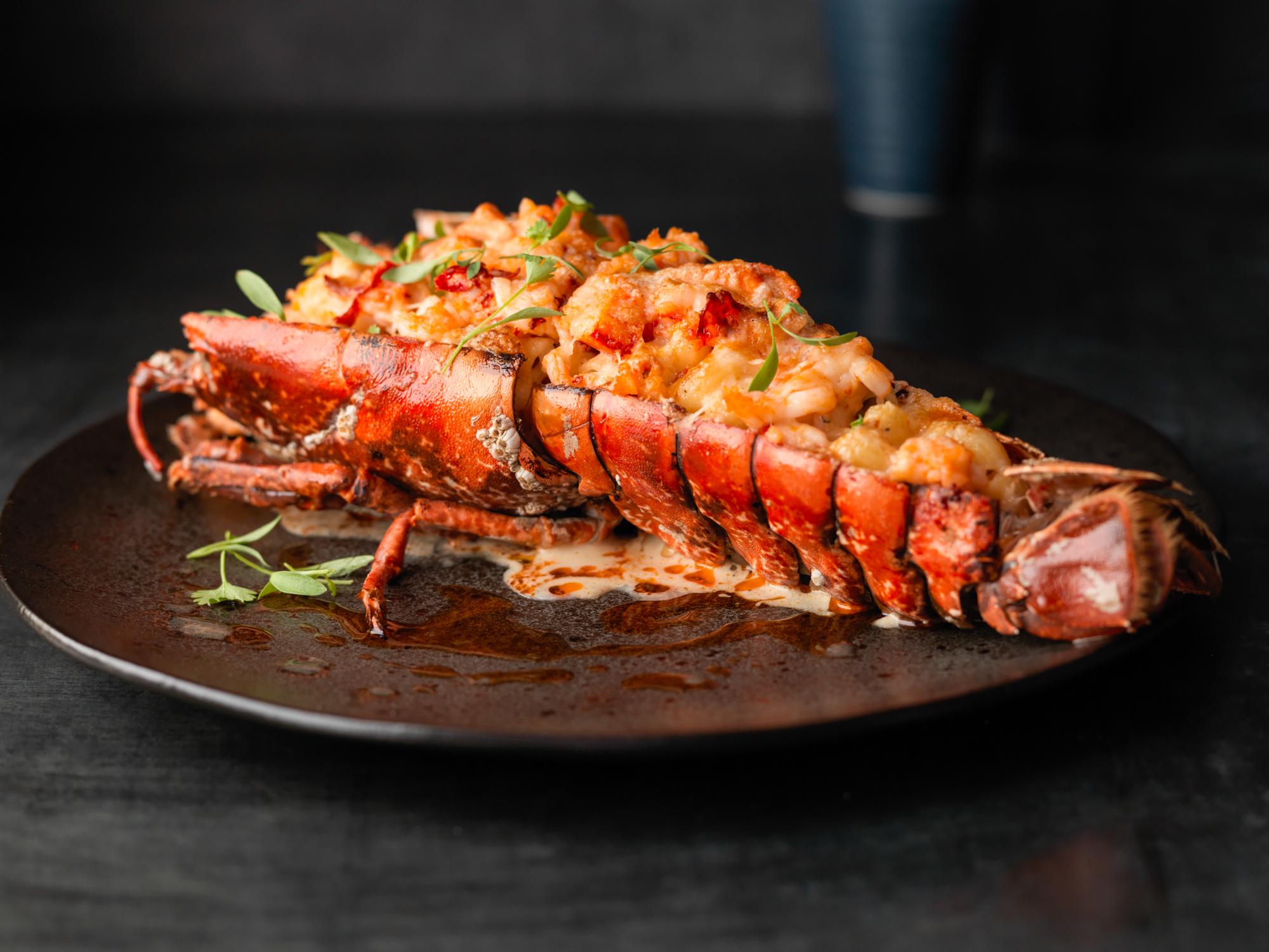 BR_Lobster MacnCheese_1076.jpg
