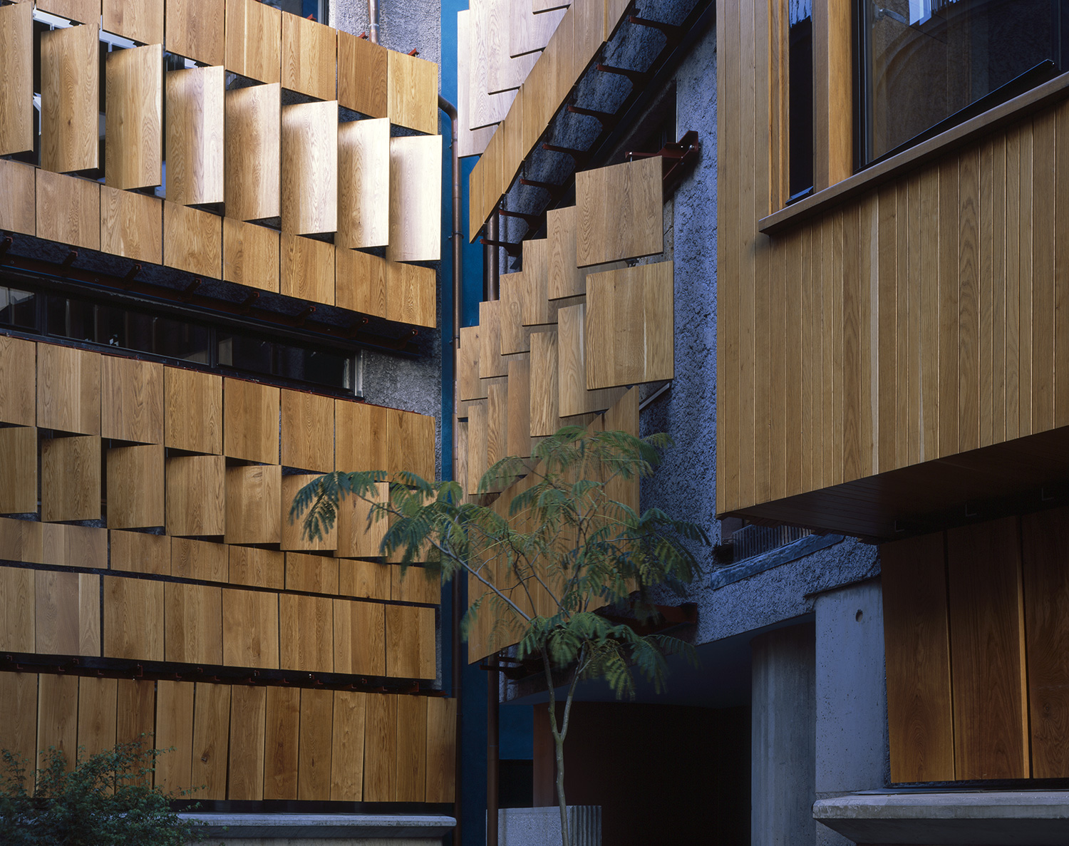 3.-Walmer-Yard-by-Peter-Salter_Courtyard-detail-showing-staggered-panels-of-timber-shutters_Photography--Helene-Binet_1500.jpg