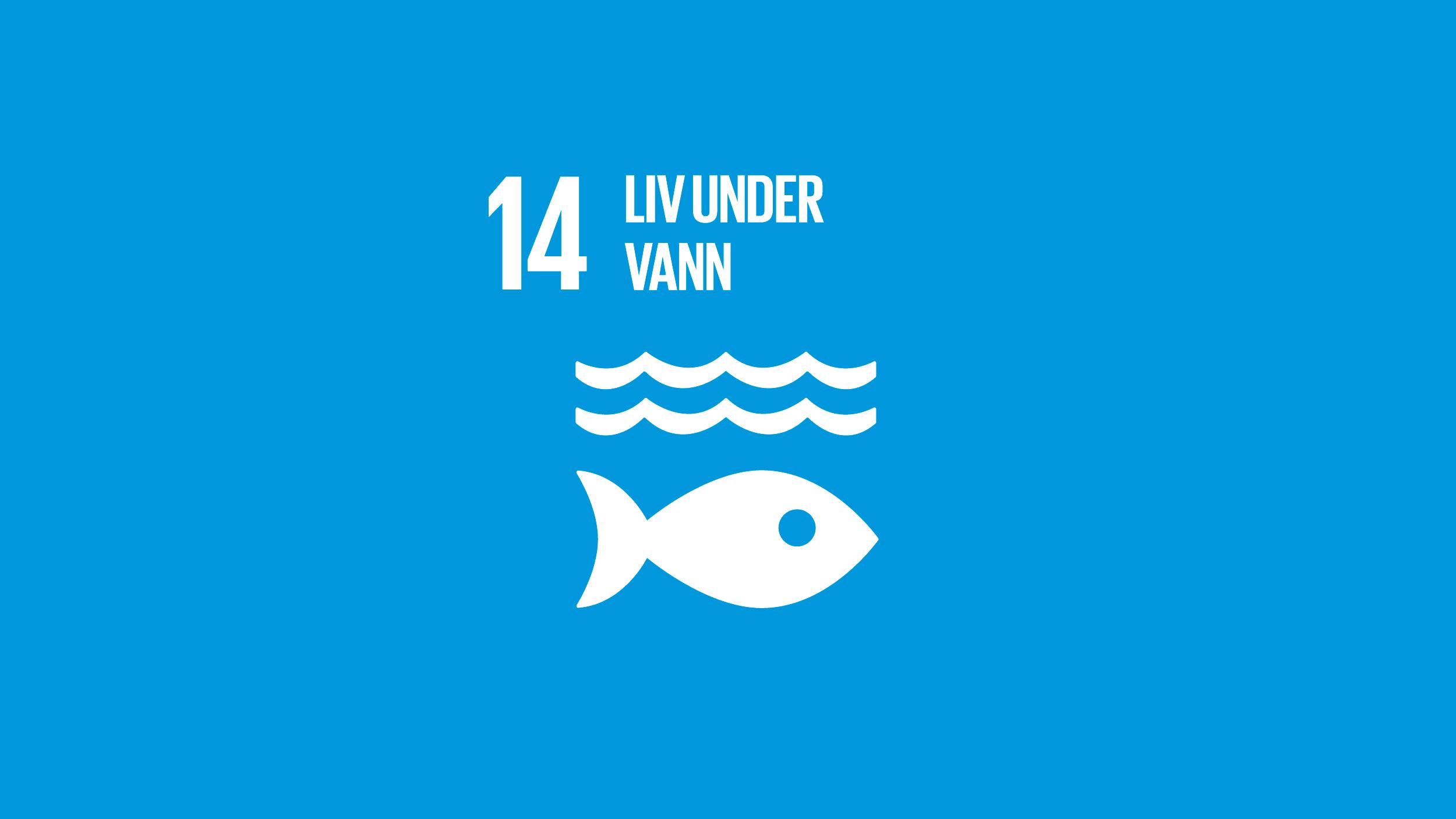 14 Liv under vann.png