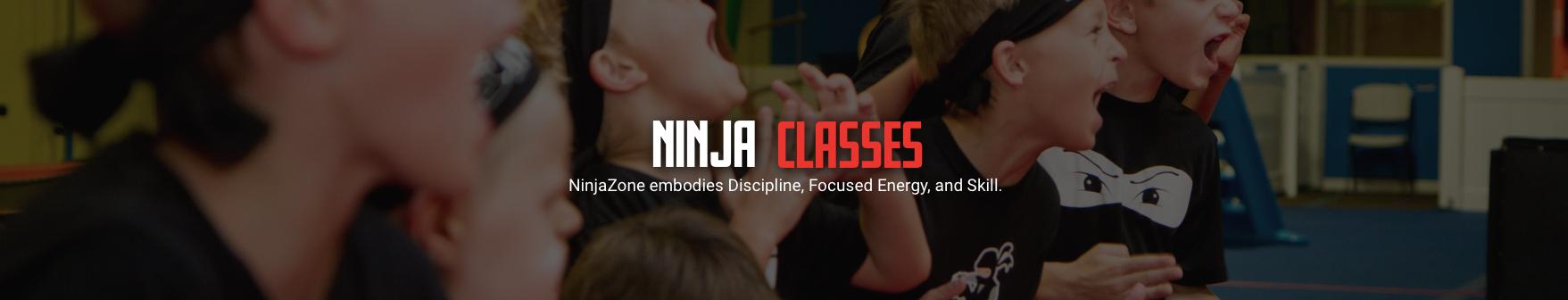 NinjaZone Class Header.jpg