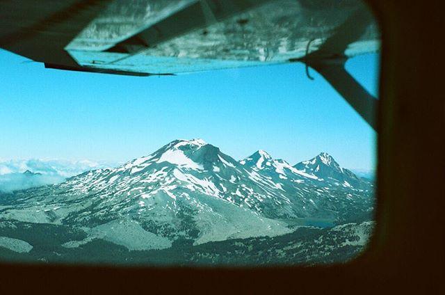 take flight . #35mm