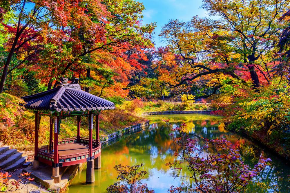 Secret Garden, Changdeokgung Palace  Photo Credit: Shutterstock