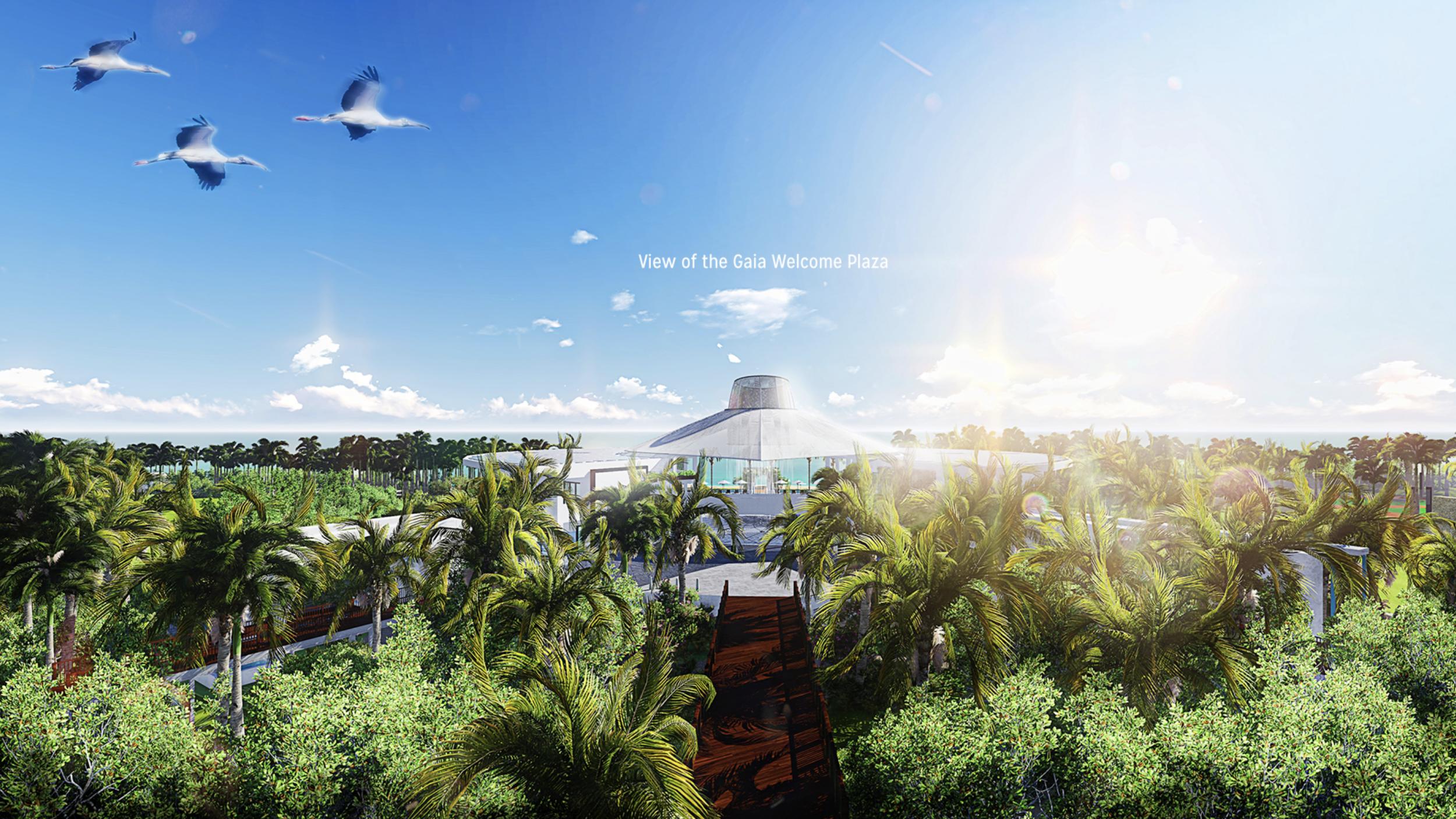 Blackadore Caye, a restorative island. By Leonardo DiCaprio