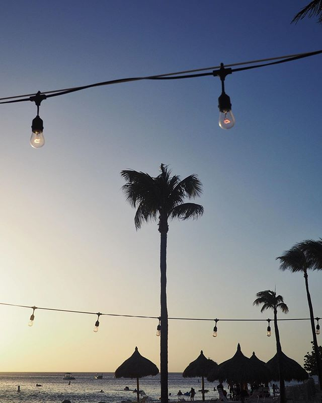Nog één weekje zomer? Nee? Ja maar. Ah pleaaaaase?! Hmm, nou goed dan. Ik doe het de komende week wel gewoon even met hele fijne foto's zoals deze 🙃 #palmtree #summer #neverendingsummer #arubanl #onehappyisland #throwback #sunset #sunsetbeach #sunsetlover #sunsetview #islandlover #aruba #arubaonehappyisland