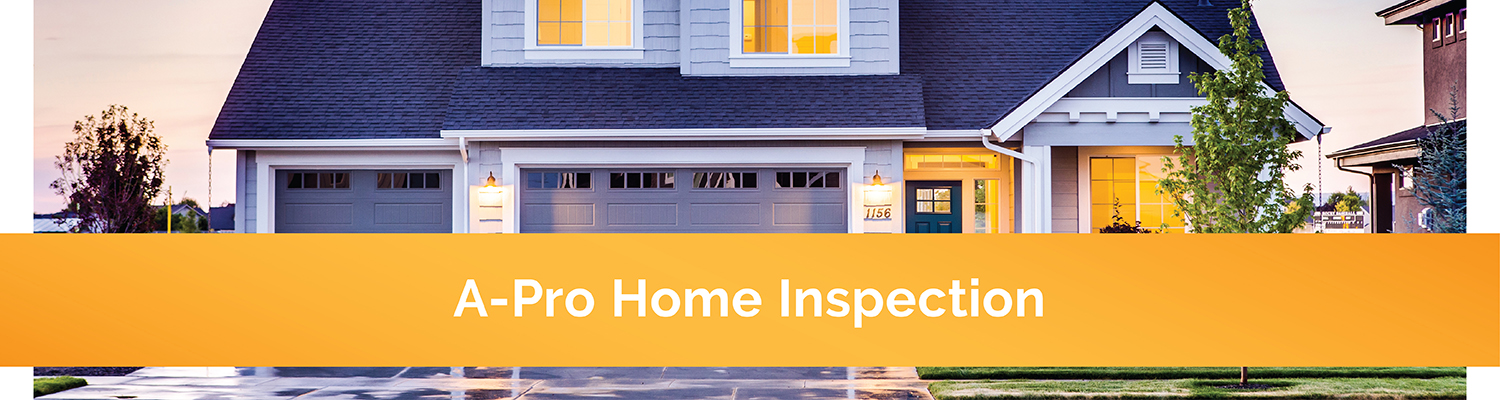 A_Pro_Home_Inspection_Portfolio.jpg