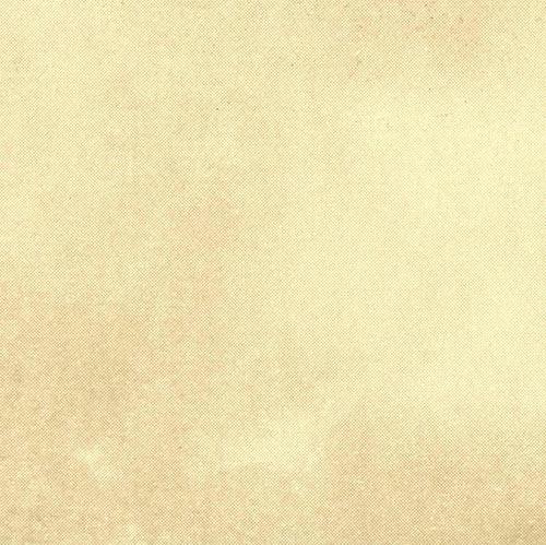 W58360 - Sourdough