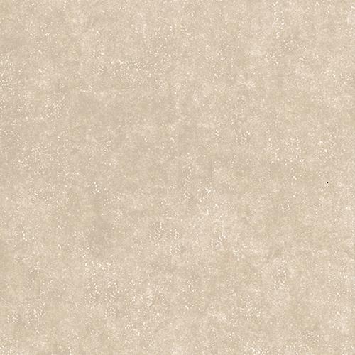 58884 - Sandpiper