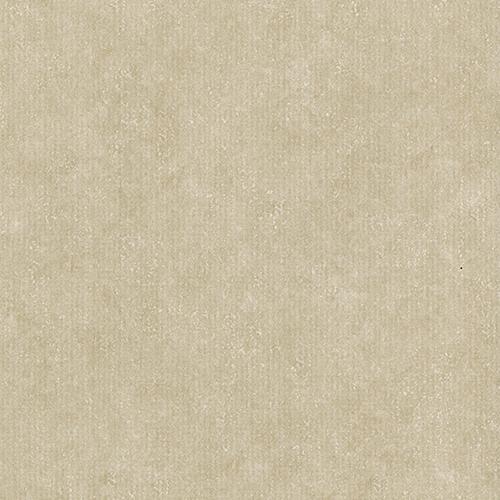 58889 - Seashell