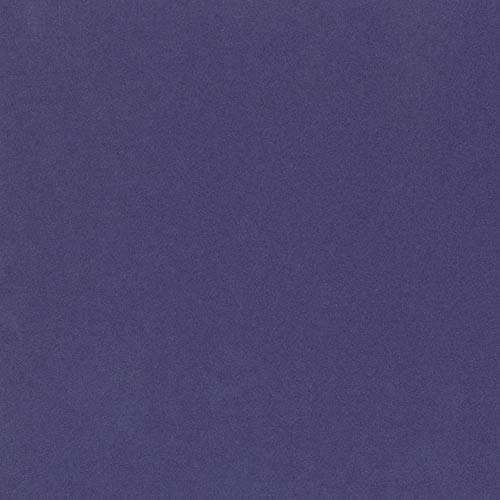 312 - Purple C-W