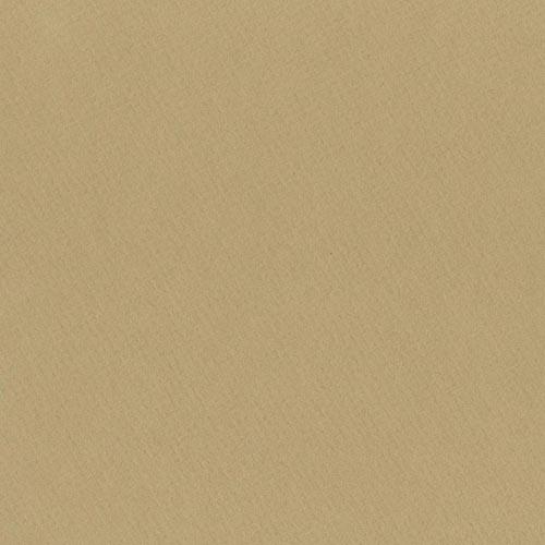 W519 - Desert Sand