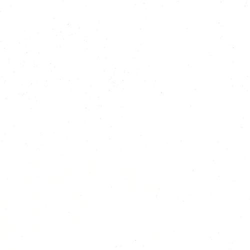 W673 - Artist White