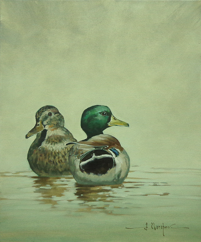 The Ducks 12x16