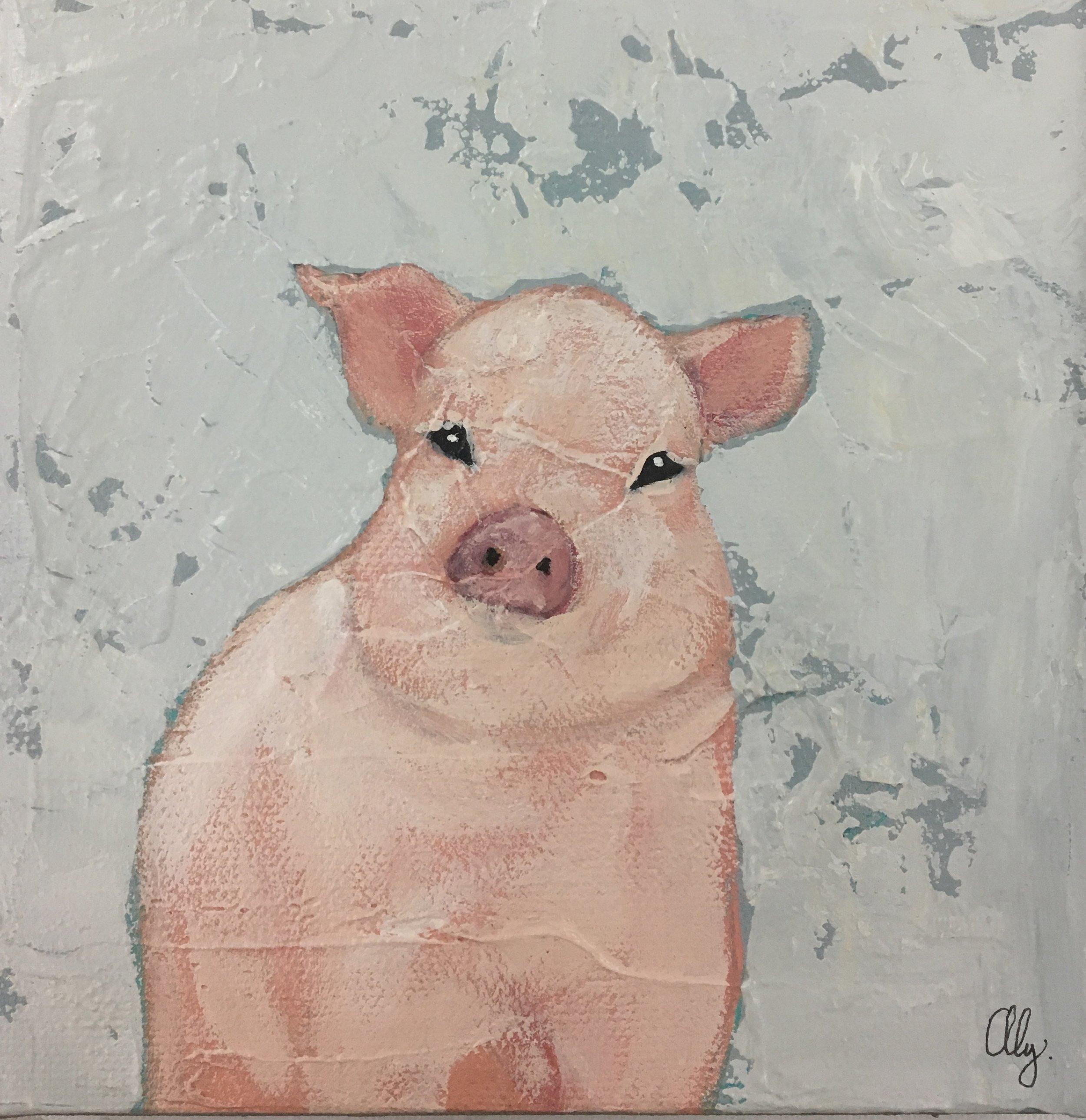 Sweet Pig I 6x6