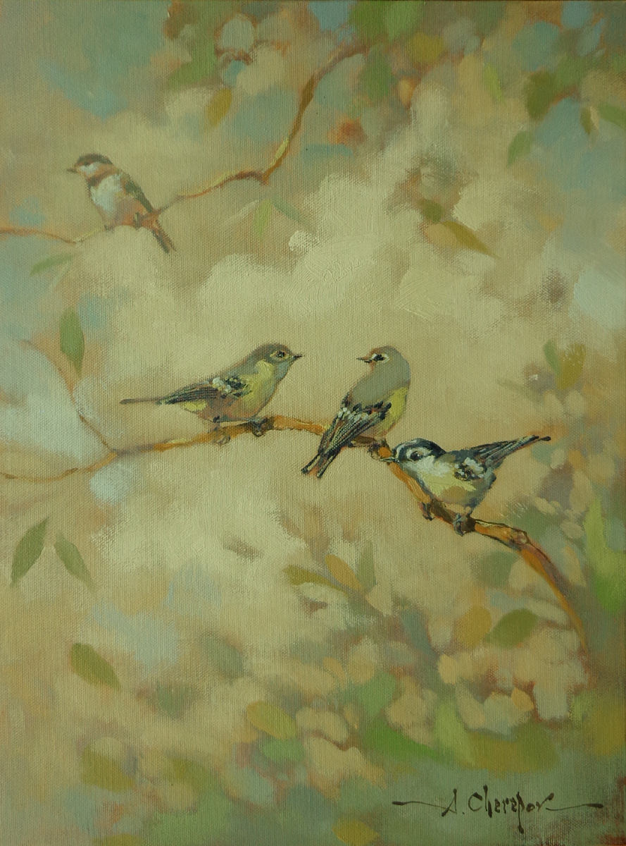Birds 102 12x16