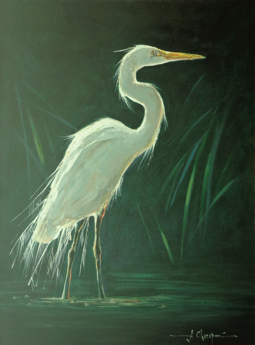 White Egret I 30x40