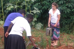 Students help take care of the school's garden.