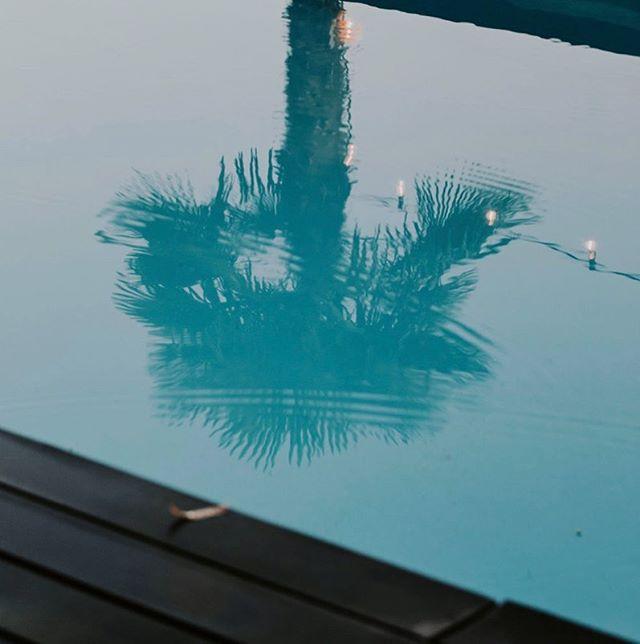 Un petit air de vacances dans les hauts de Montreux décors parfait pour notre jolie Yvonne 📸