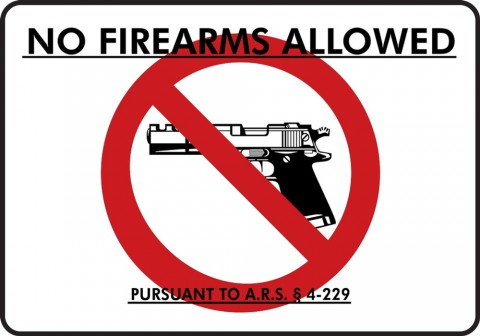 I have to believe the use of the formidable Desert Eagle as the model pistol is intentional...Let's find the biggest, scariest pistol ever made (one whose movie presence is only ever associated with sociopathic mobsters), and what reasonable person wouldn't think this policy is completely sound?