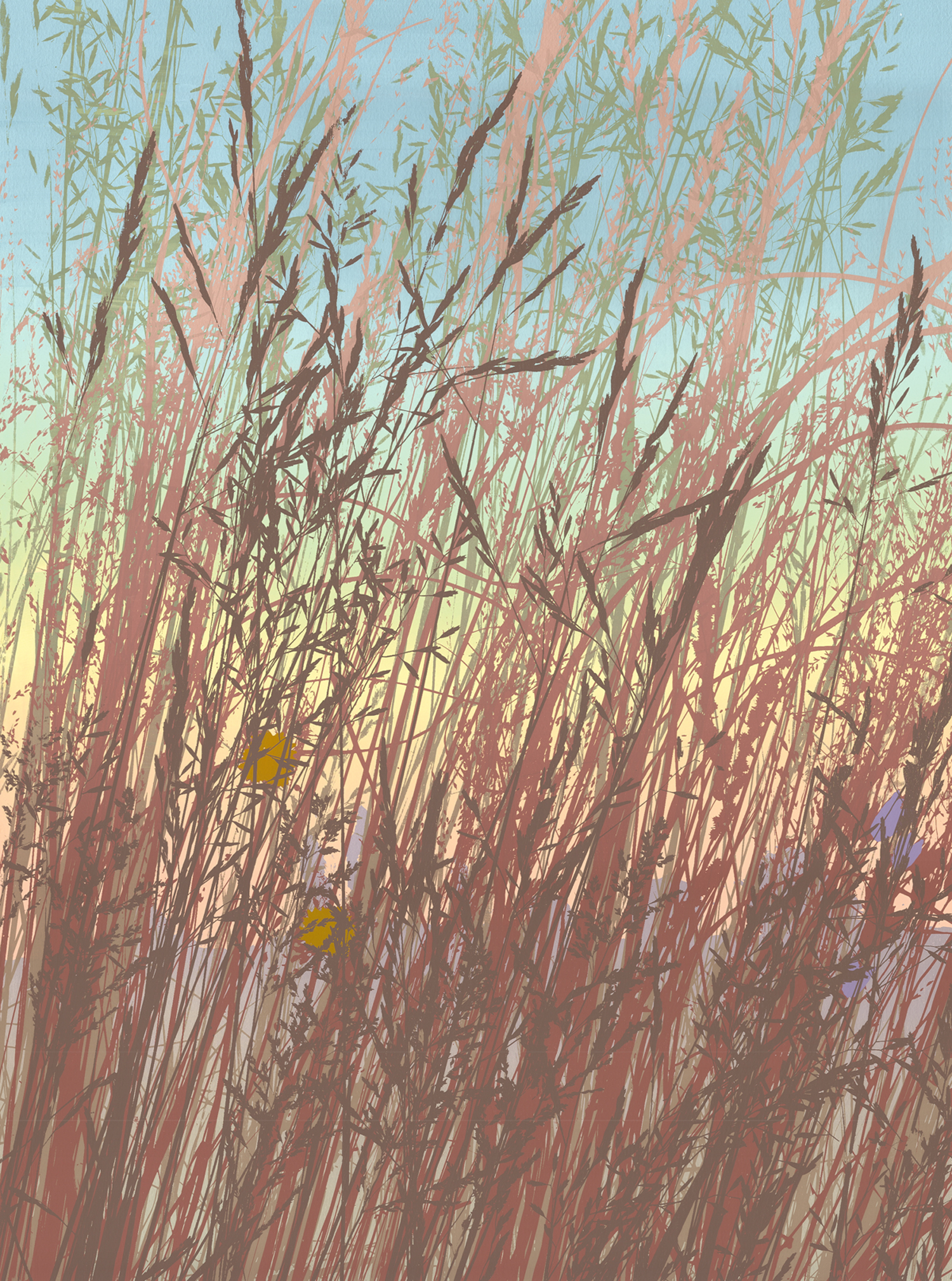 "255   Fall Grasses 2   24"" x 18"" 10 colors 5 edition / 3 available $425"