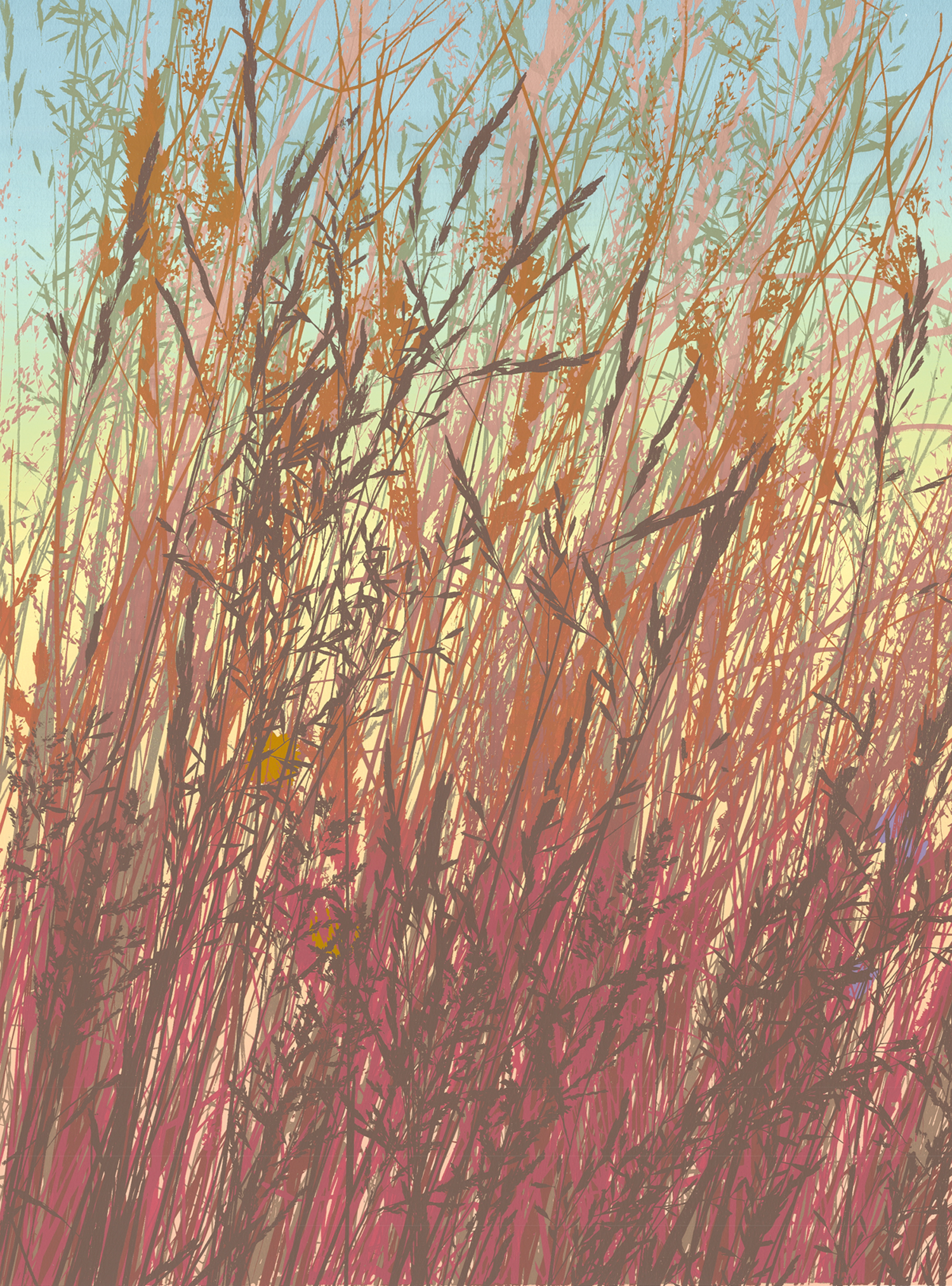 "254 Fall Grasses 24"" x 18"" 10 colors 5 edition / 3 available $425"