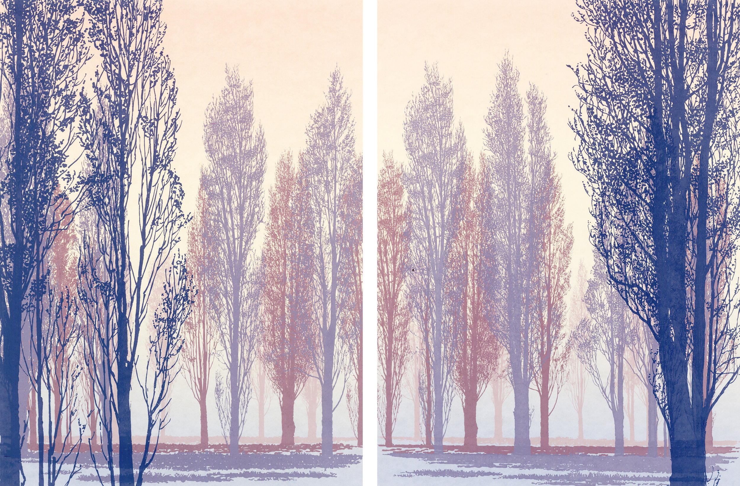 Poplars 1 and 2