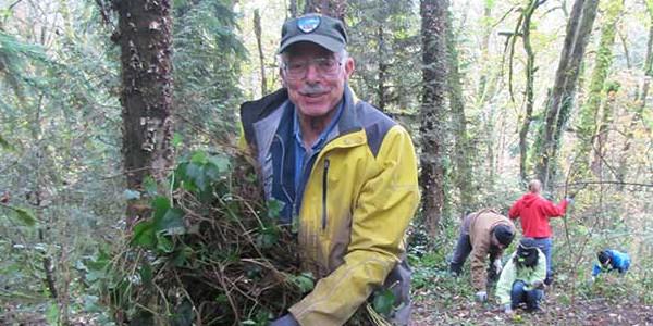 tryon-creek-volunteer-phil-hamilton-ivy.jpg